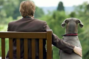 animali terapeuti pet therapy